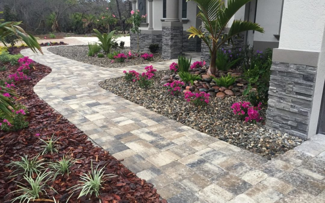 Front Driveway for Model Home